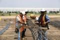 construction, sitework, preparation, work crew, tying pier steel